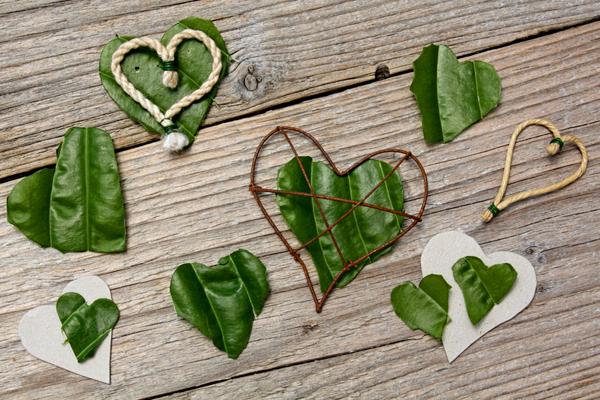 Heart, Leaf