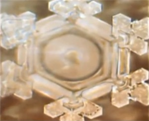 water crystal thank you